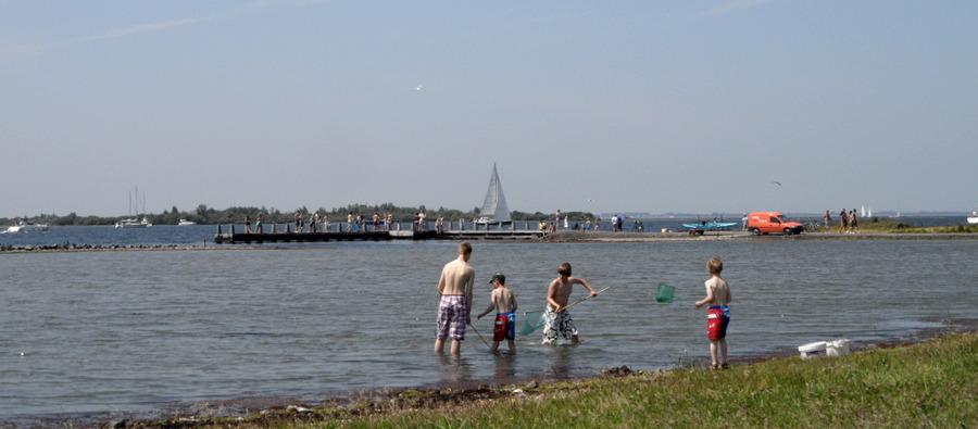 krabben vangen aan het Grevelingenmeer (Slikken van Flakkee)